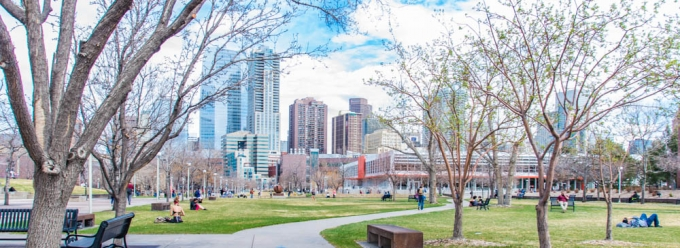 View of Auraria Library and downtown Denver in spring
