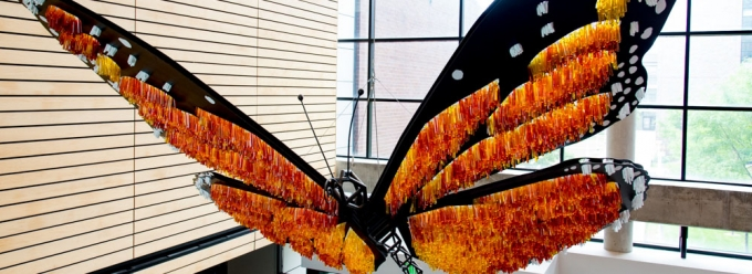 Butterfly sculpture in the Science Building